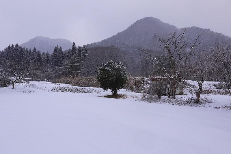 201221001.jpg