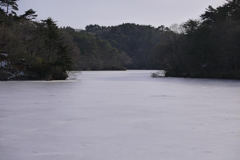 201221501.jpg