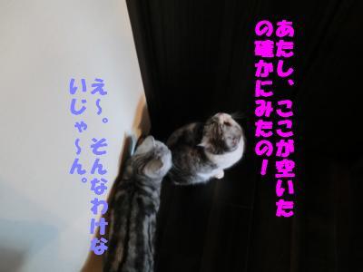 072_convert_20120108090417.jpg