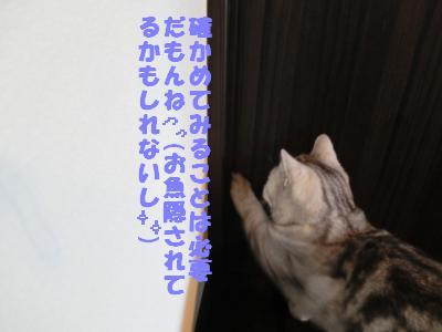 079_convert_20120108090534.jpg