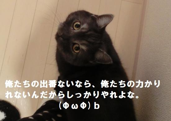 1_20120423080122.jpg