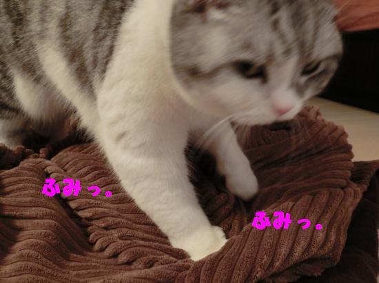 1_convert_20120318010339.jpg