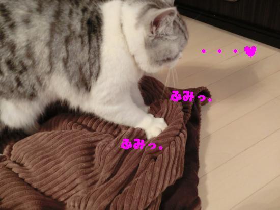 3_convert_20120318012303.jpg