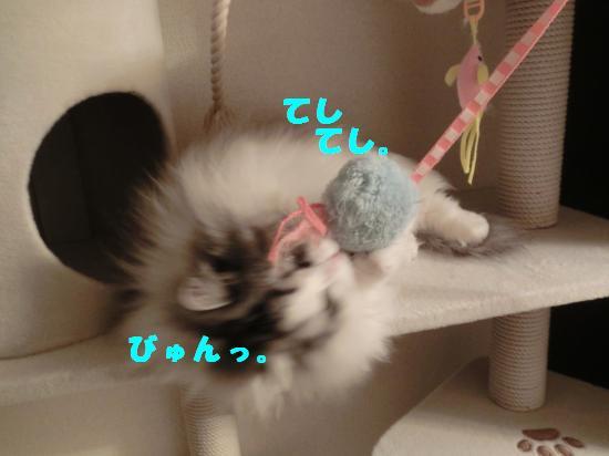 4_20120316024619.jpg