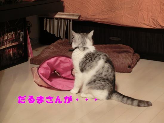 4_20120422204053.jpg