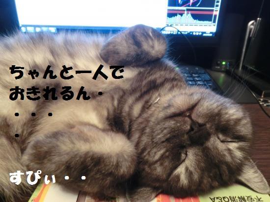 5_20120401075133.jpg