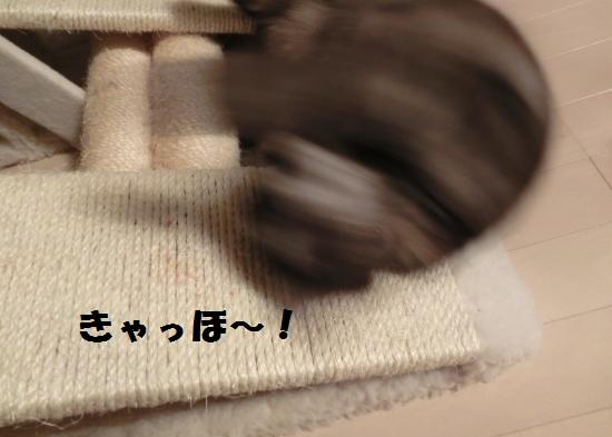 6_20120417080622.jpg