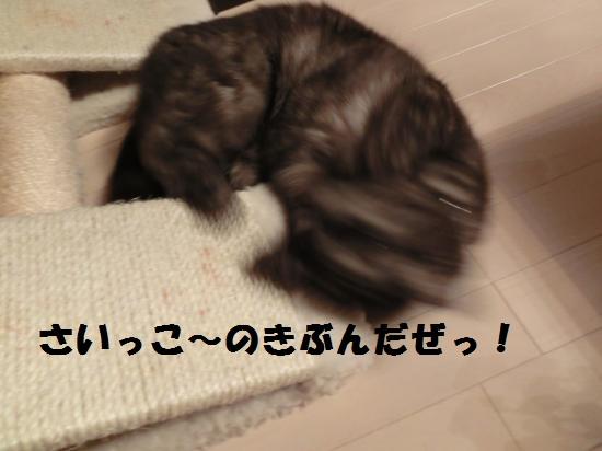 7_20120417080648.jpg