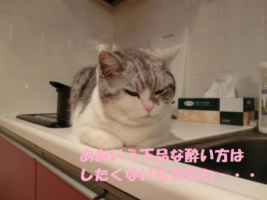 9_20120417080646.jpg