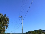 P2980796.jpg