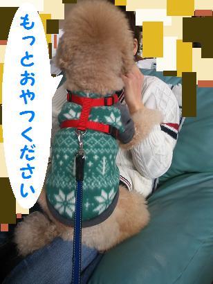 DSC_4418.jpg