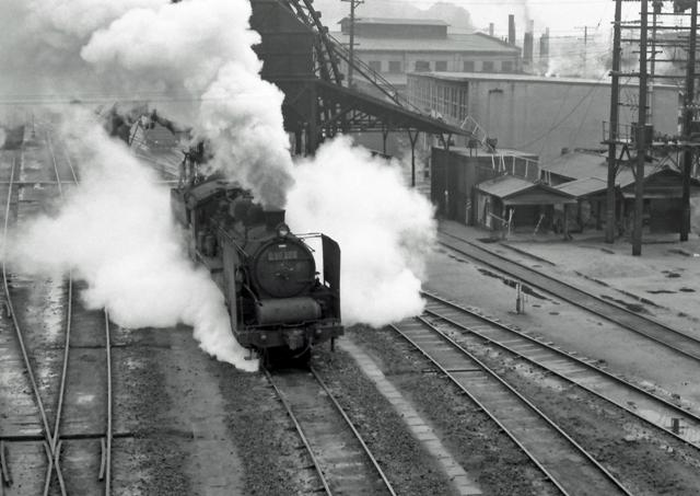 D50-205.jpg