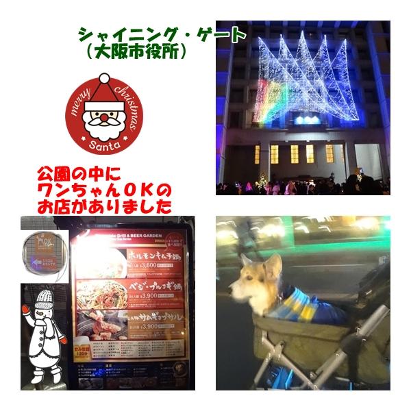 3_20121224171339.jpg