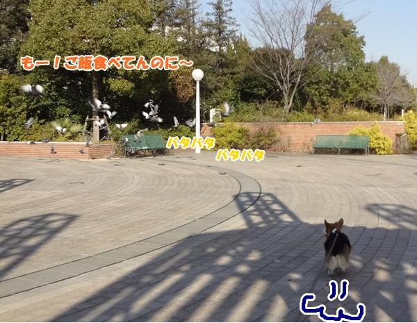 3_20130107191000.jpg