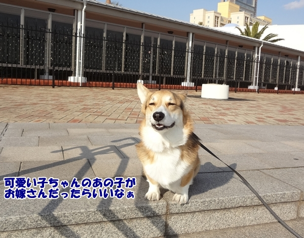 3_20130110193925.jpg