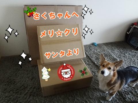 4_20121213185109.jpg