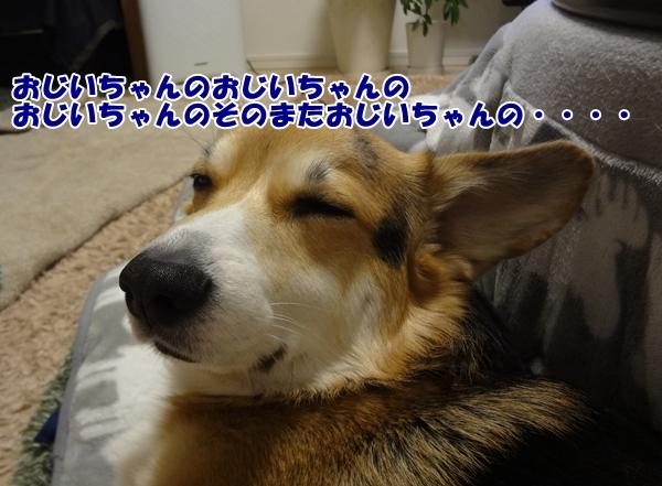 4_20121226214802.jpg