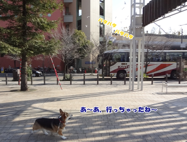 4_20130107191001.jpg