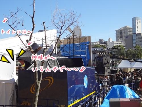 5_20121125225052.jpg