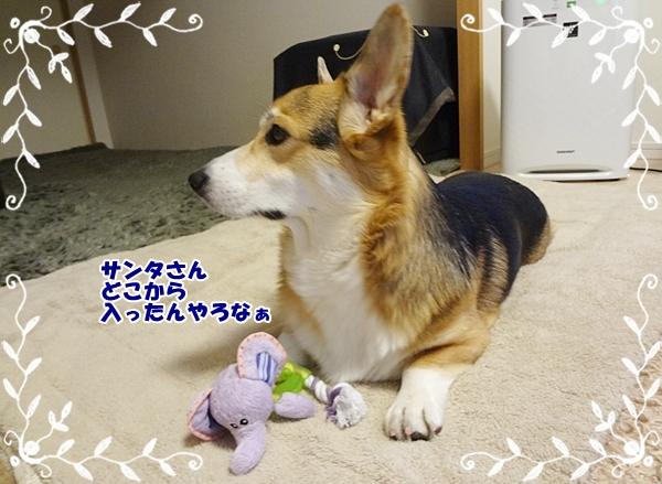 5_20121225184235.jpg