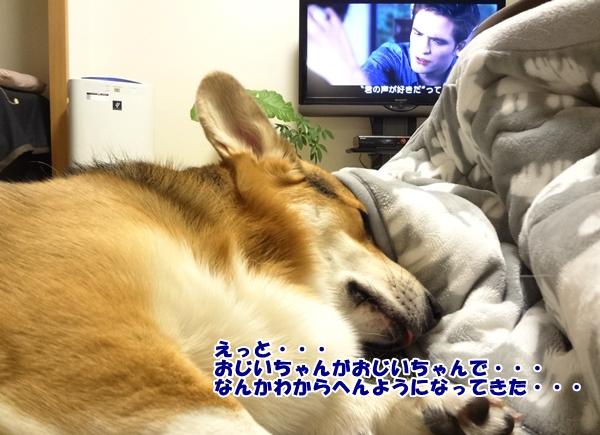 5_20121226214803.jpg