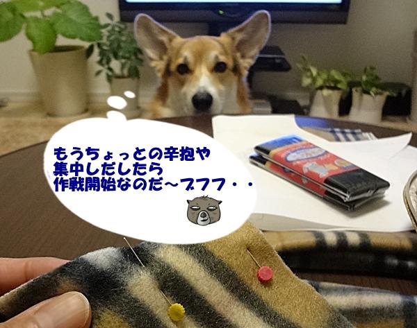 6_20130109191012.jpg