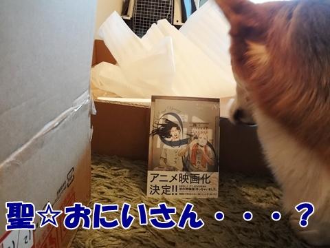 7_20121213185143.jpg