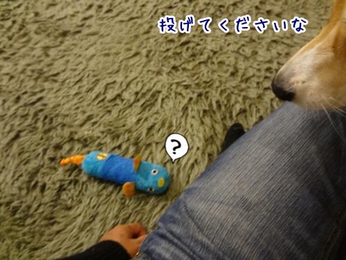 8_20121105222116.jpg