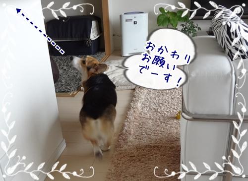 DSC04625_20121120181503.jpg