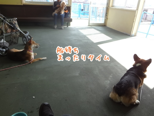DSC05374.jpg
