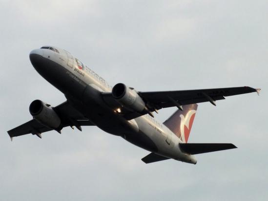 A319_NX.jpg