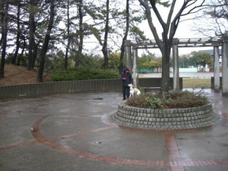 100228CD2Himonashi1.jpg