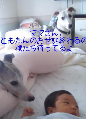 110526TomotanTakuShiro