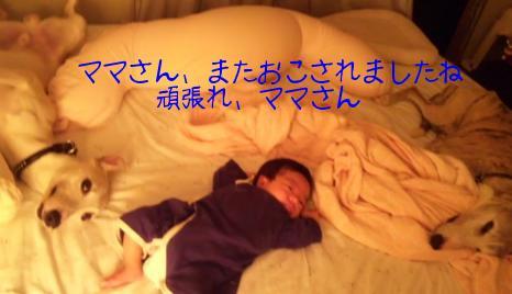 110521TomotanTakuShiro