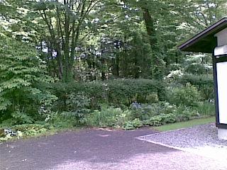 20100710(005).jpg