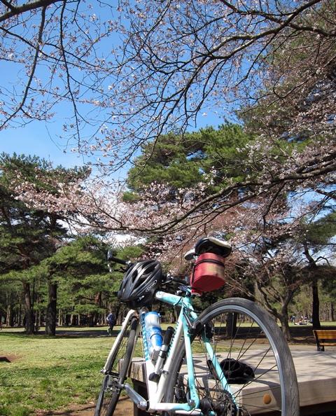 20120407野川公園