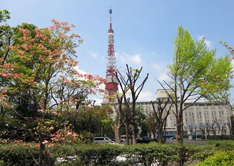 プリンスホテルと東京タワー