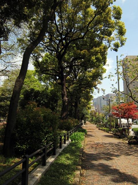 日比谷公園脇の歩道