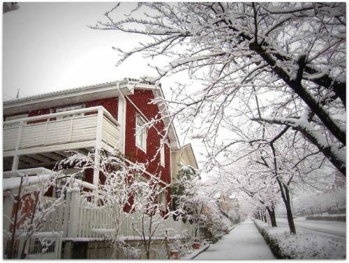 雪景色2014