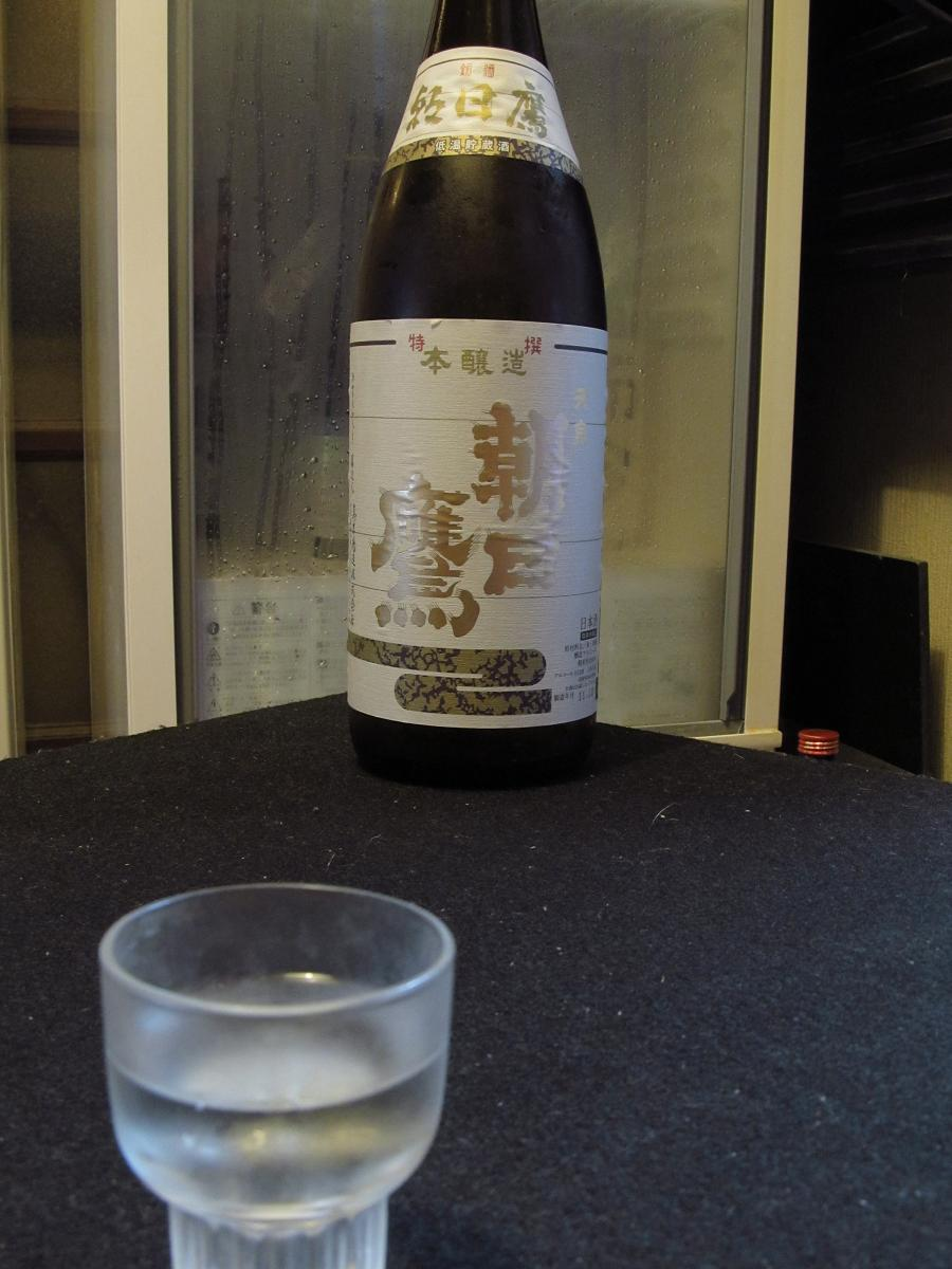 IMG_1873朝日鷹