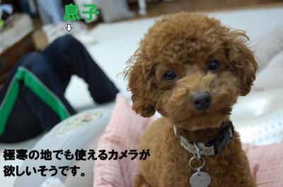 縺祇convert_20121203205326