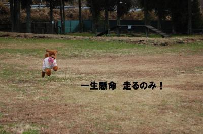 DSC_0054+-+繧ウ繝斐・_convert_20130110225322