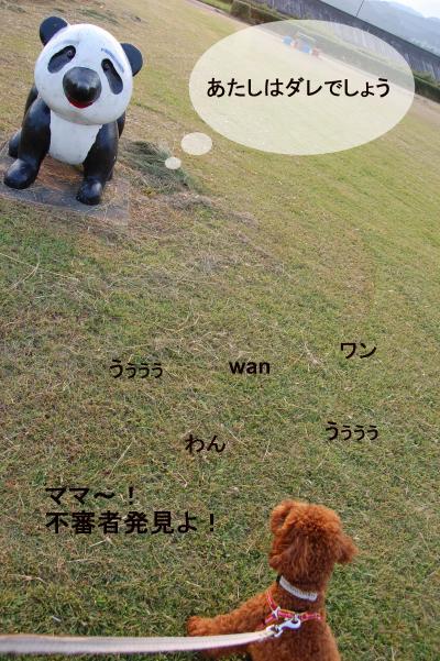DSC_1094-001_convert_20120915215947.jpg