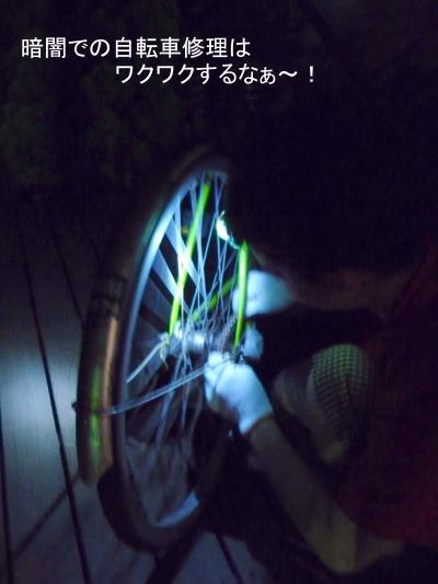 P1020745-001_convert_20120906085842.jpg