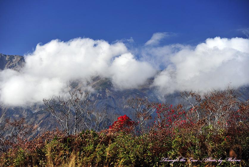 植物園からの紅葉と山々1