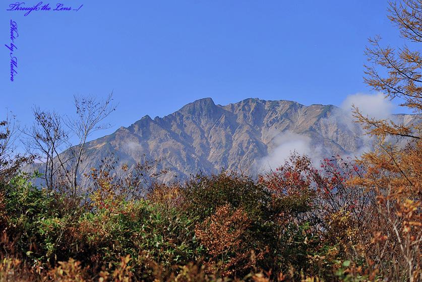 植物園からの紅葉と山々