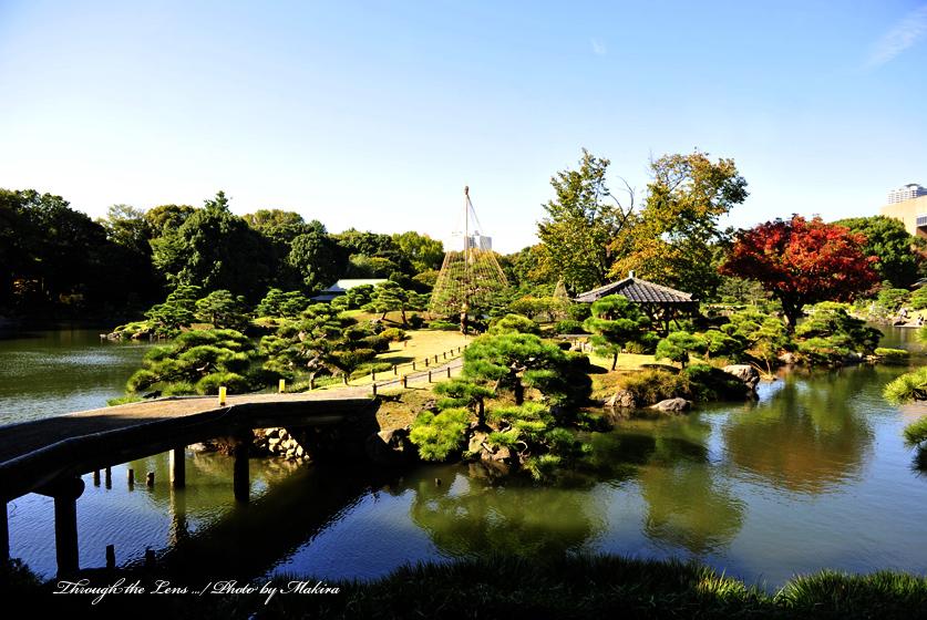 清澄庭園4