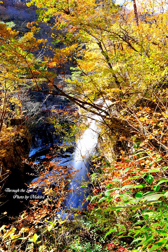 虹見の滝3