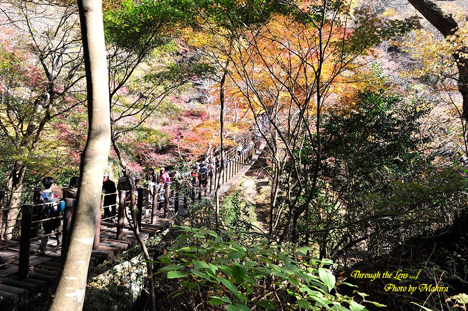 汐見滝吊り橋4