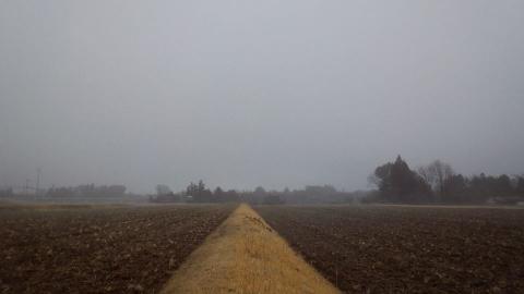 畑の呼吸②